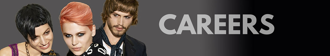 Banner saying Careers